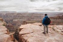 Зворотній погляд людини з рюкзаком милуючись мальовничим видом на Каньйон в США — стокове фото