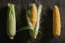 Desde arriba de la disposición de mazorcas de maíz frescas cosechadas sobre fondo negro - foto de stock