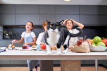 Shocked boy and girls in aprons looking at cat sitting on table with ingredients at modern kitchen — Stock Photo