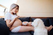 Fröhliche blonde schwangere Frau in weißer, heimeliger Kleidung füttert Labrador-Hund mit Stück Banane aus Schüssel — Stockfoto