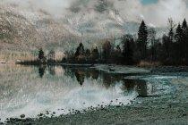 Мальовничий краєвид спокійного прозорого озера, оточеного сніжними горами і темними лісами в Галльштаті. — стокове фото
