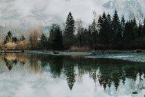 Дивовижний краєвид спокійного прозорого озера в оточенні засніжених гір і темного лісу в Галльштаті. — стокове фото