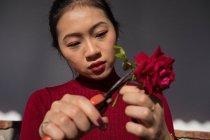 Молодая азиатка режет стебель розы секаторами — стоковое фото