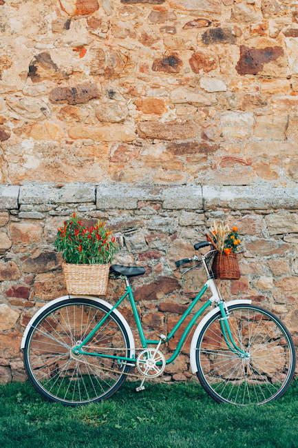 Bicicleta vintage com flores — Fotografia de Stock