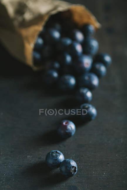 Ripe blueberries on dark table — Stock Photo