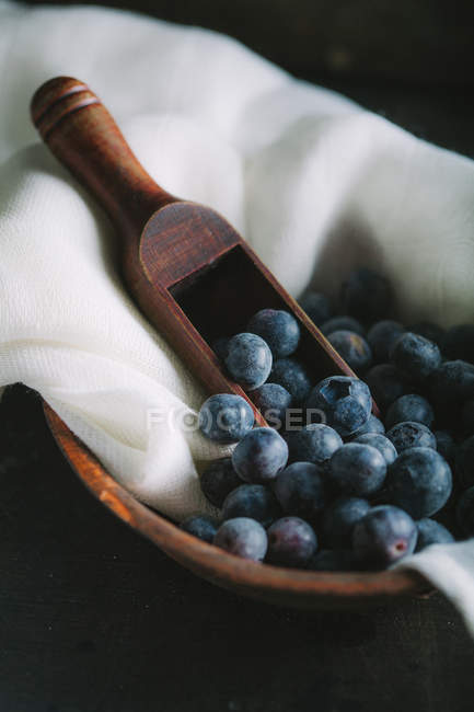 Blueberries in clay bowl — Stock Photo