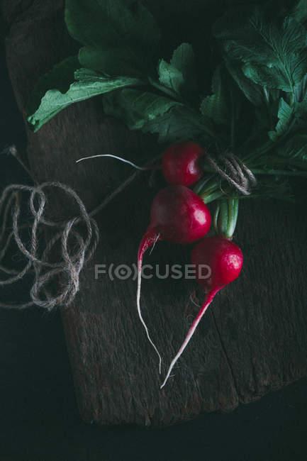 Bunch of fresh radishes — Stock Photo