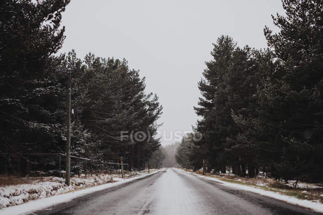 Пустой зимний путь в сельской местности — стоковое фото