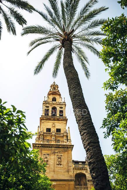 Gran Mezquita de Córdoba - foto de stock