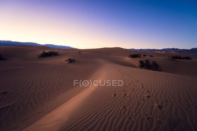 Dunes de sable plat Mesquite — Photo de stock