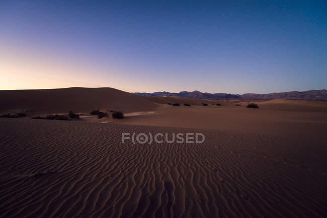 Dunes de sable plat Mesquite — Photo de stock