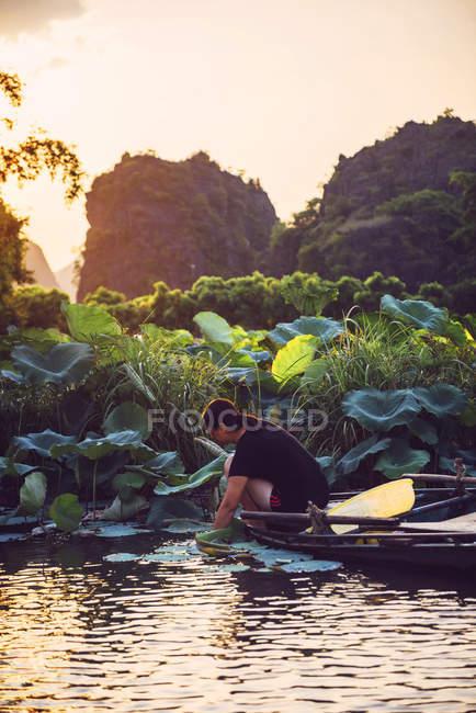 Жінка на човні в Tamcoc — стокове фото
