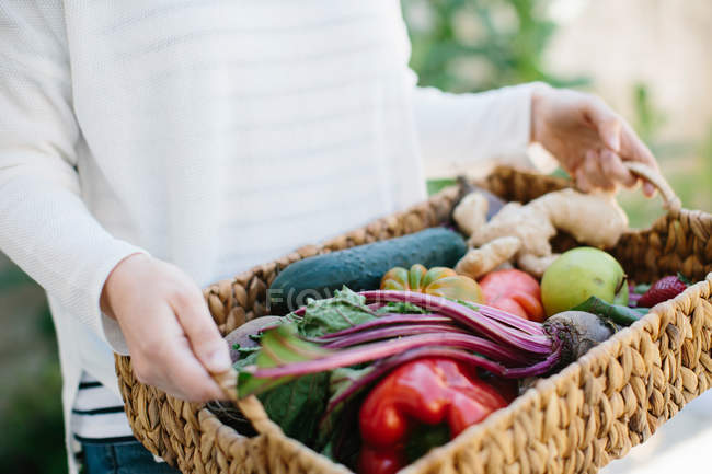 Hands holding basket with fruits and vegetables — Stock Photo