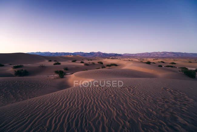 Mesquite Flat Sand Dunes — Stock Photo