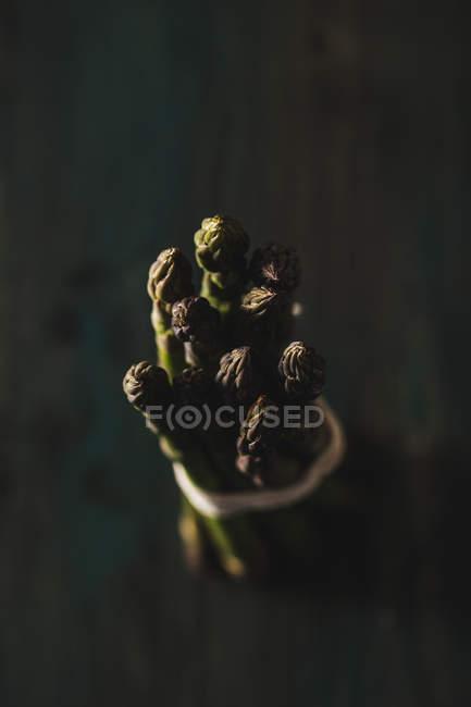 Lance di asparagi freschi — Foto stock