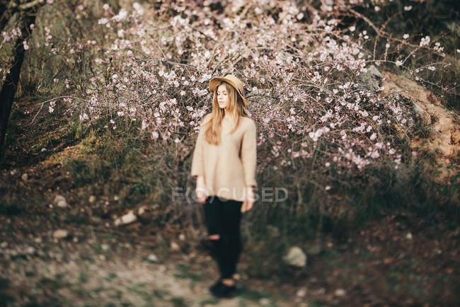 Молодая девушка против яблони — стоковое фото