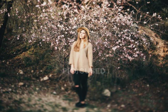 Молода дівчина проти яблуня — стокове фото