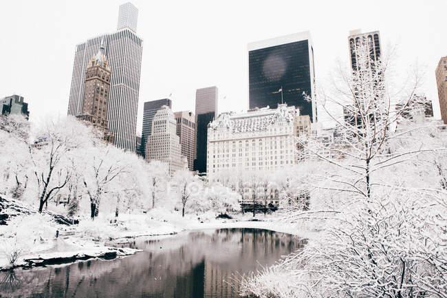 Central park cityscape — Stock Photo