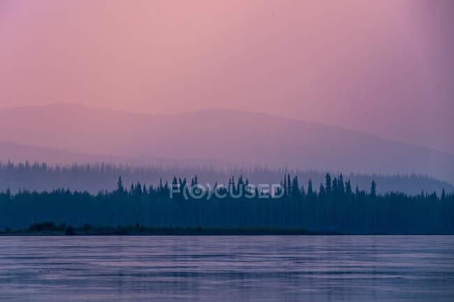 Bosques de coníferas en orilla de lago - foto de stock