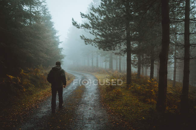 Man walking on road in woods — Stock Photo
