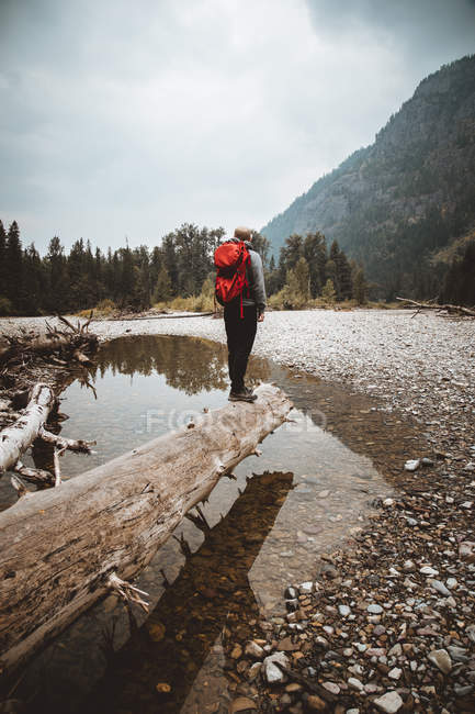 Man with backpack on trunk — Stock Photo