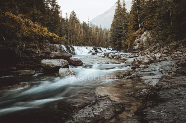 Corriente de agua en las montañas - foto de stock