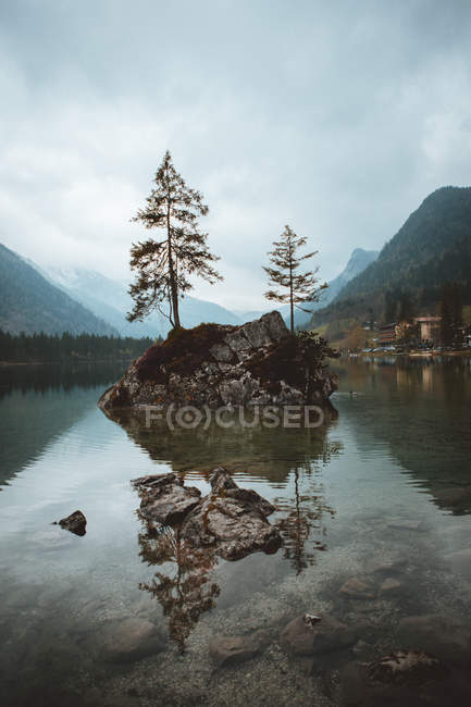 Камни с деревьями в озере — стоковое фото