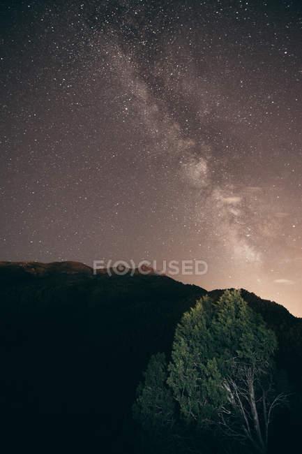 Landschaft in der sternenklaren Nacht — Stockfoto