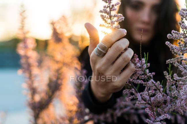 Жінка, торкаючись бранчі квітів — стокове фото