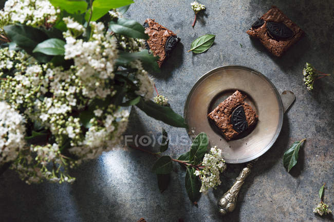 Metal plate with brownie bar — Stock Photo