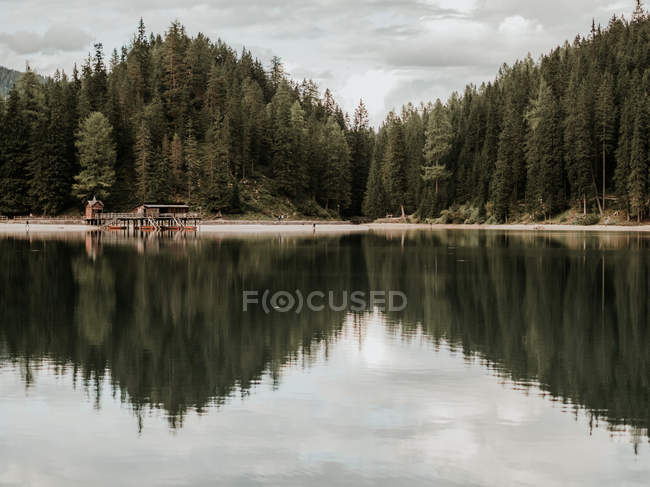 Forest and dock reflecting in lake — Stock Photo