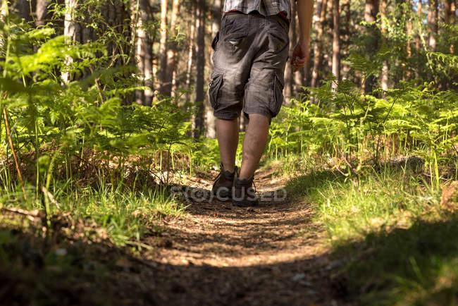 Homem de aventura na floresta — Fotografia de Stock