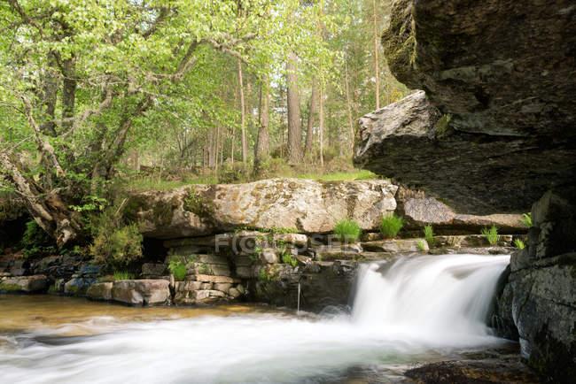 Скрытые тайны водопад в лесу — стоковое фото