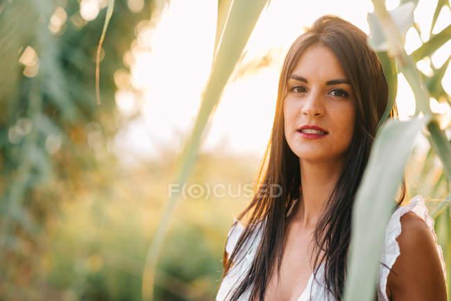 Молодая женщина в саду — стоковое фото