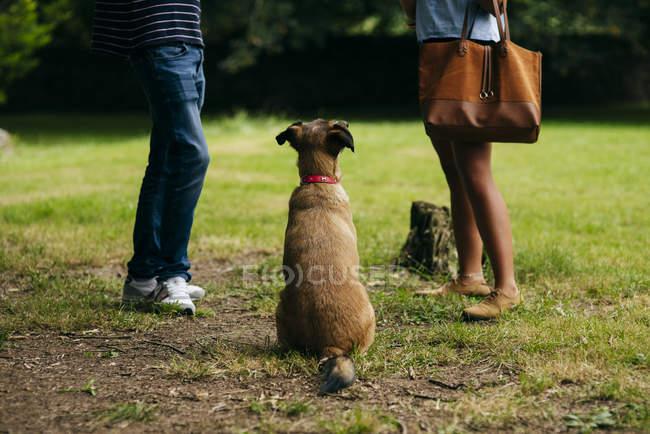 Couple with dog outside — Stock Photo