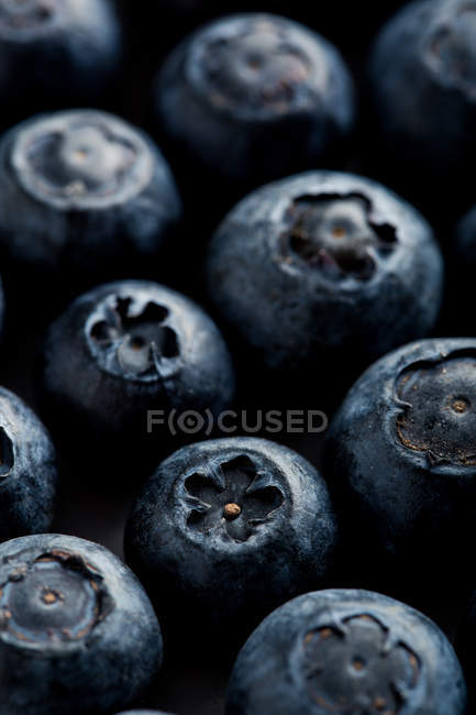 Macro shoot of a blueberries — Stock Photo