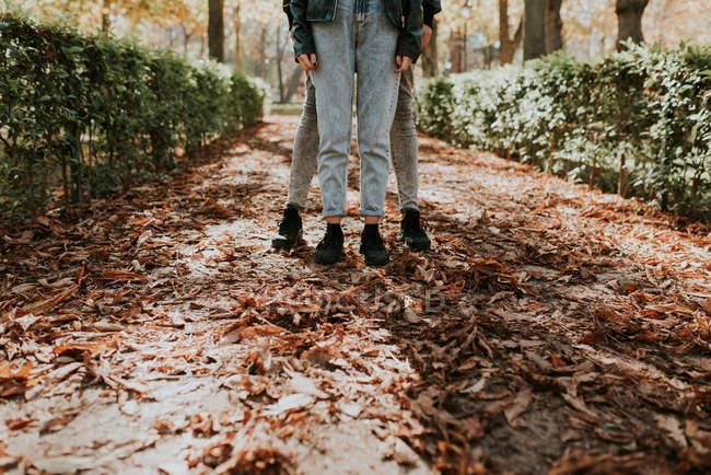 Sección baja de pareja posando en callejón con hojas secas - foto de stock