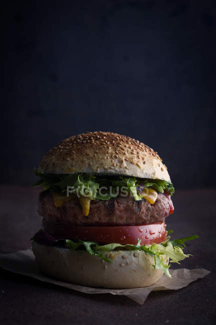Hamburger delizioso gourmet — Foto stock