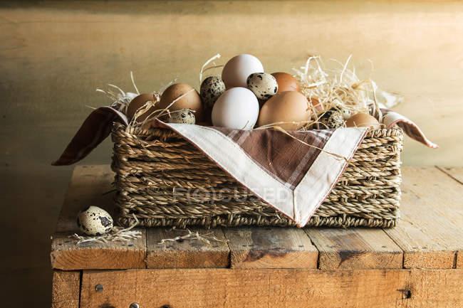 Différents types d'œufs crus — Photo de stock