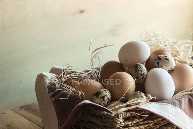 Different kind of raw eggs — Stock Photo