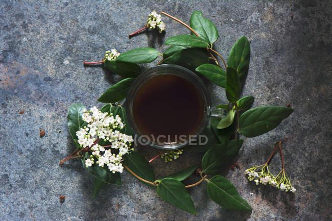 Tazza di caffè in corona floreale — Foto stock