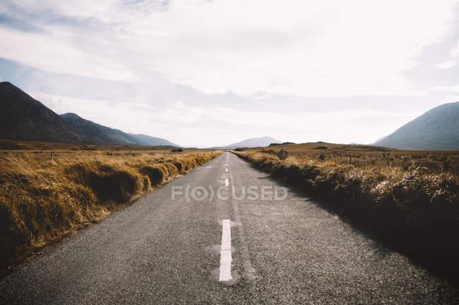Самотня асфальтована дорога проходить через поле в горах. — стокове фото