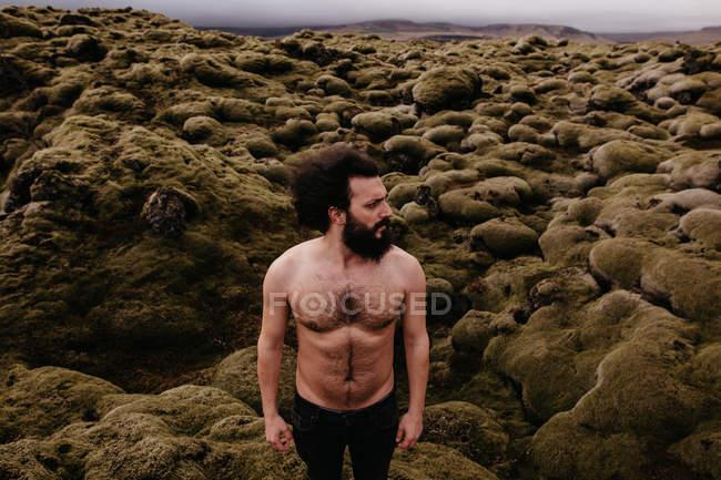 Hombre sin camisa en la naturaleza islandesa - foto de stock