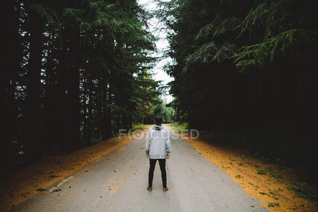 Back view of man standing on lonely asphalt road in forest. — Stock Photo