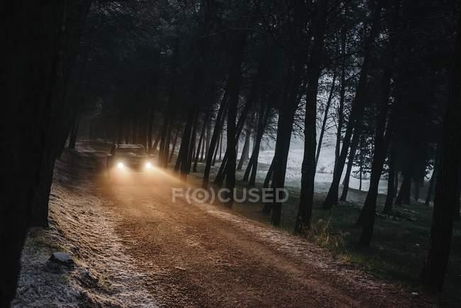 Voiture conduite en forêt gelée — Photo de stock