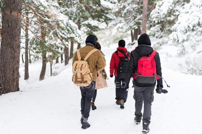 Gruppe von Personen mit Rucksack im Wald — Stockfoto