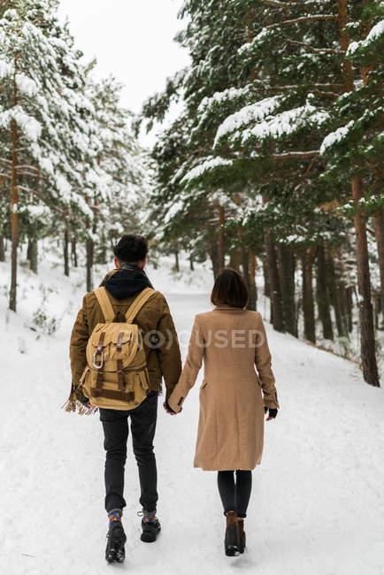 Пара прогулок в лесу — стоковое фото