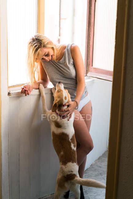 Женщина играет с собакой на террасе — стоковое фото