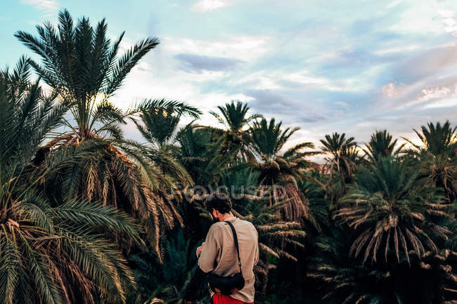 Man in dried palms — Stock Photo
