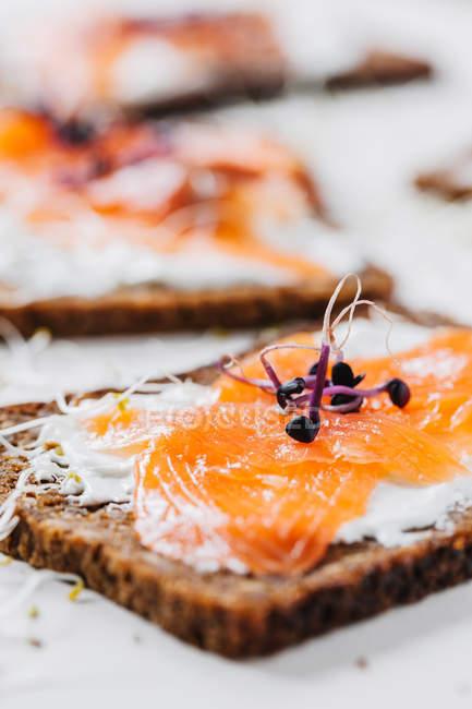 Sandwiches au poisson de vue latérale — Photo de stock